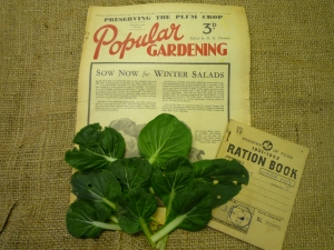 World War Zoo Pak Choi and  garden archive items Oct 09 016