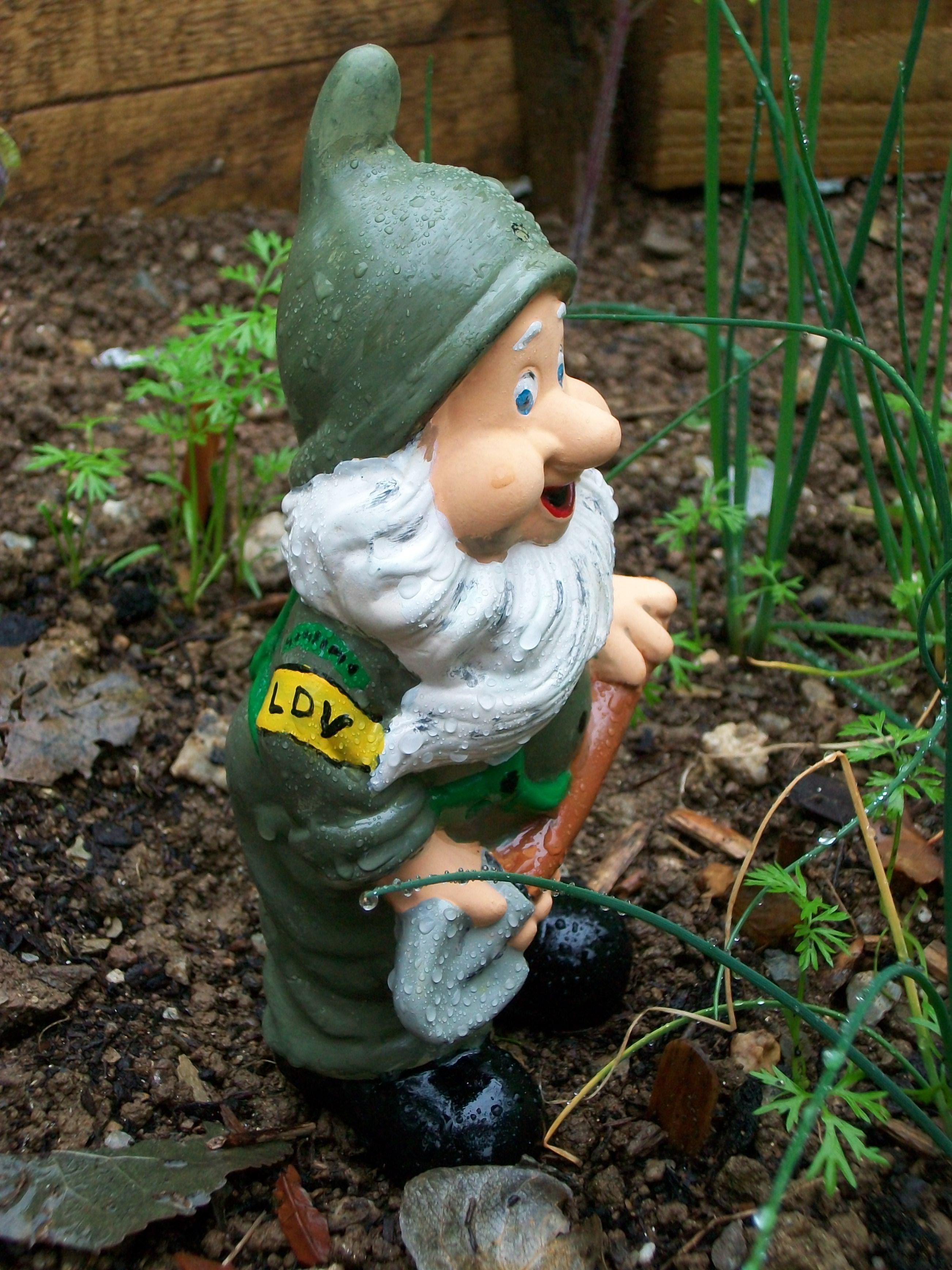 Gnome In Garden: Worldwarzoogardener1939's Blog
