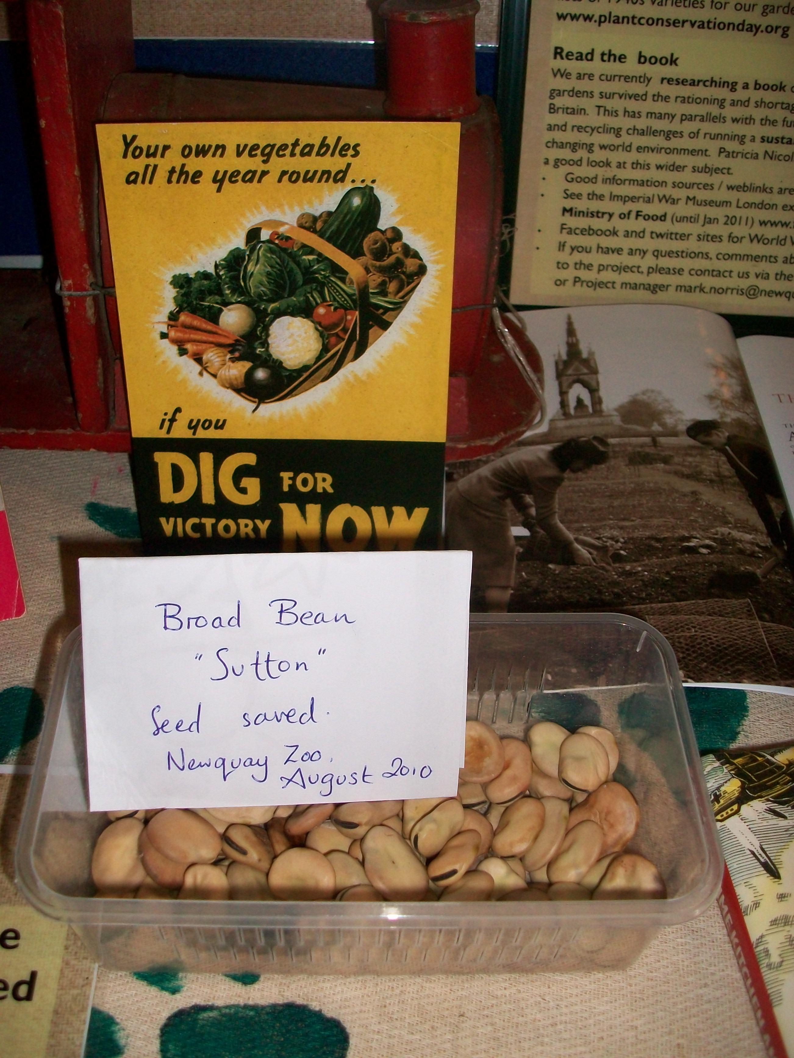 Wartime Kitchen And Garden December 2010 Worldwarzoogardener1939s Blog