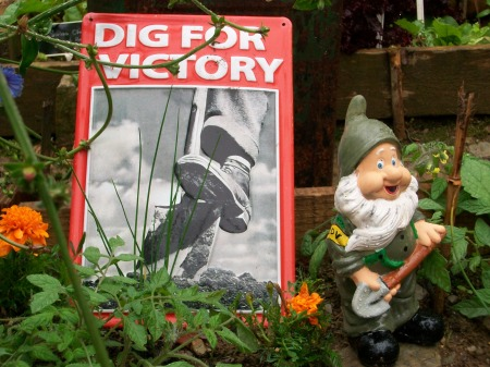 LDV Gnome guard in his usual allotment spot in our wartime 'Dig For Victory' garden Summer at Newquay Zoo, 2010