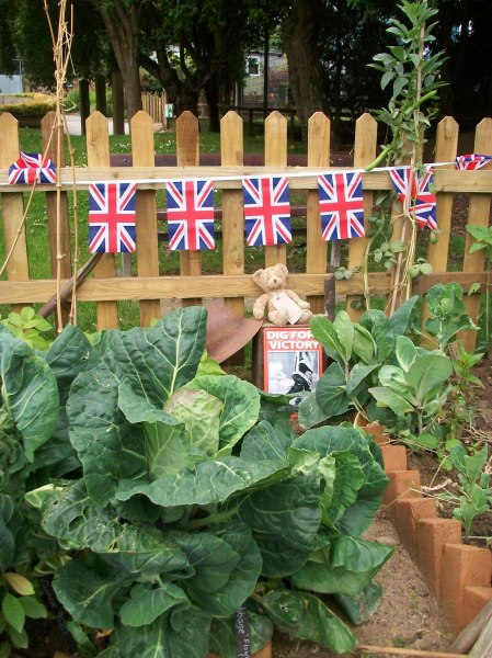 Celebration bunting, cabbages and mascot Blitz Bear out in the World War Zoo gardens at Newquay Zoo, Summer 2011