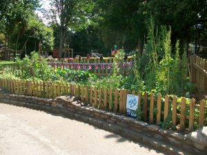 New fencing and enlarged space, Summer 2011: World War Zoo gardens, Newquay Zoo