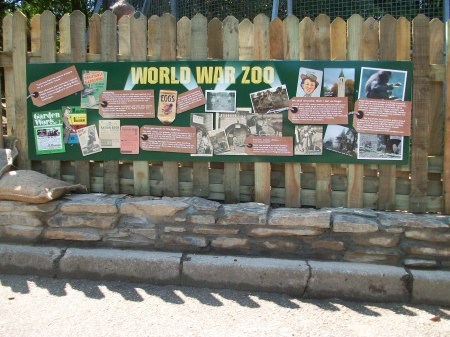 World War Zoo gardens graphic sign Summer 2011