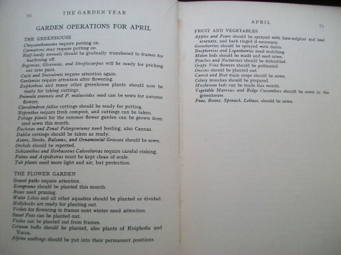 April 1936 tasks, The Garen Year