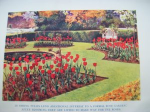 Frontispiece to The Garden Year 1936, written by Herbert Cowley.