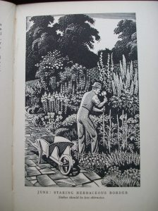 The Garden Year, illustration