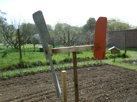 Unusual 'aeroplane' weathercock or bird scarer, Trengwainton NT wartime garden project, May 2014. Image: Mark Norris, WWZG.