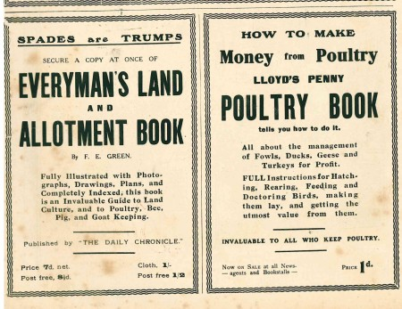 Spades as Trumps - allotments and an early version of Dig For Victory WW1, The War Budget, 1917