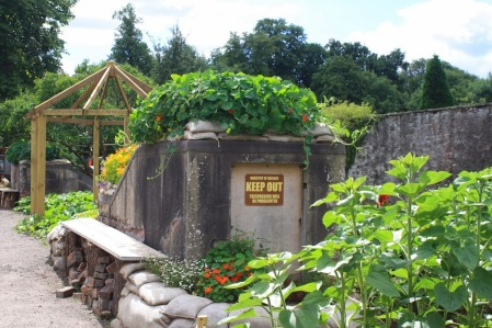 Wild Place project Facebook photos Sanctuary Garden wartime shelters, covered in edible nasturtiums!