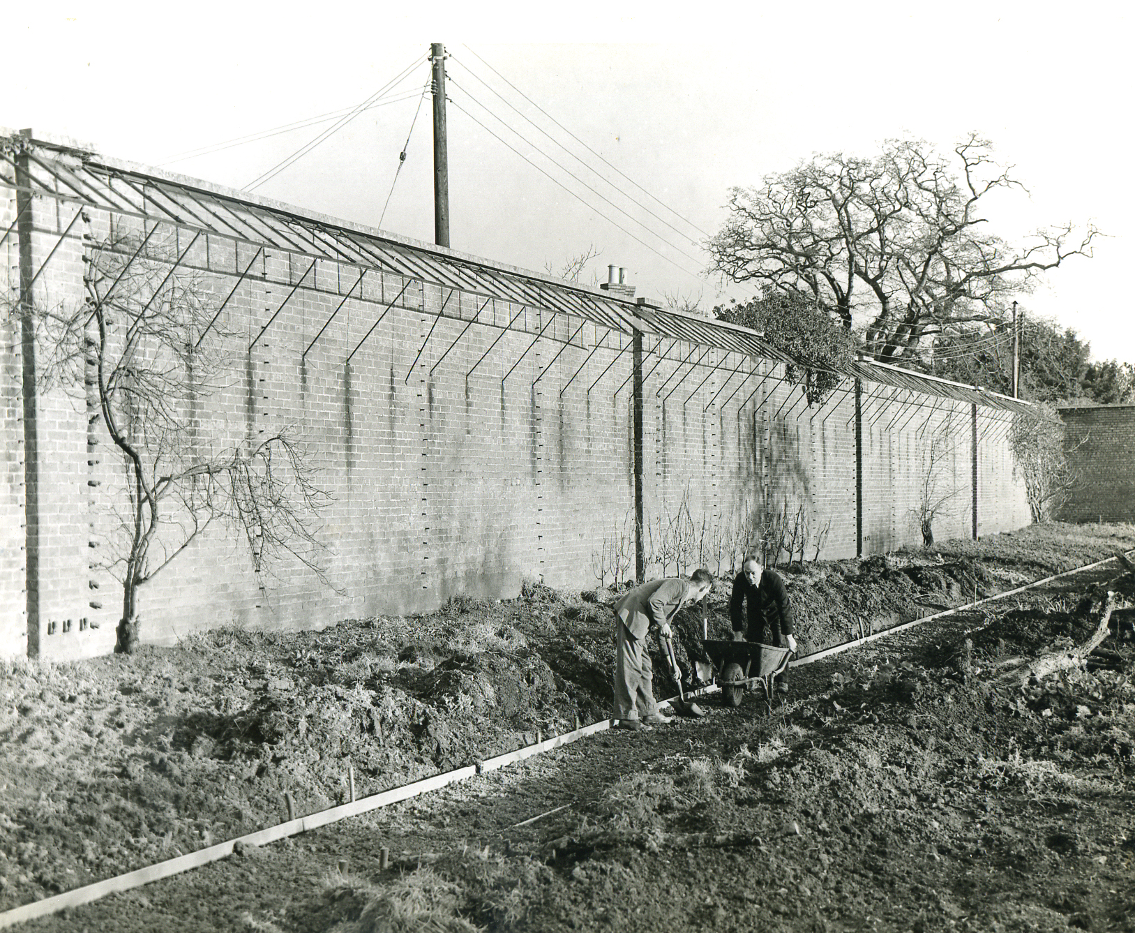 Digging into Bristol Zoo\'s wartime garden past – mystery photograph ...