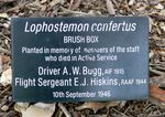 Royal Botanic Gardens Melbourne staff memorial tree plaque (Photo by Graham Saunders via Monuments Australia website)