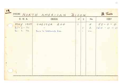 bison record card