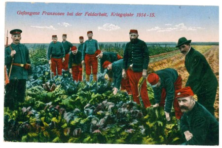 "French prisoners of war in a German postcard, wearing the old early French WW1 uniform (almost bright Waterloo colours) before it became sky blue, like the cornflower - ""les bleuets""  (Image Source: Mark Norris, World War Zoo Gardens collection)"