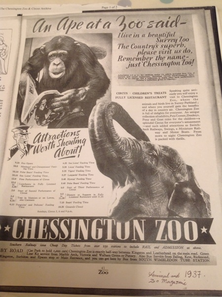 Chessington Zoo advert 1937, Zoo and Animal Magazine (Image source: Mark Norris private collection)