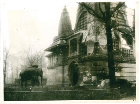 berlin-elephant-front.jpg