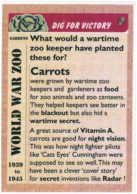 carrots-ww2