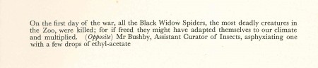 p77 black widow caption